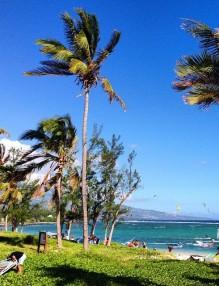 Plage de Trou d'Eau - Kite surf La Saline