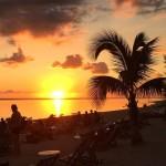 Sunset Plage Palm Coucher de Soleil Reunion
