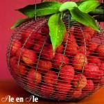 Les letchis, fruits très prisés de La Réunion