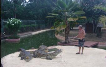 croc parc photo 4
