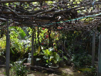 Gîte La Cascade