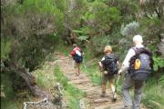 Les balades et randonnées facile à faire à La Réunion