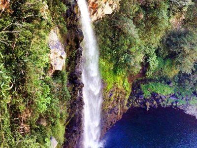 Grand-Bassin, le dernier jardin authentique de La Réunion