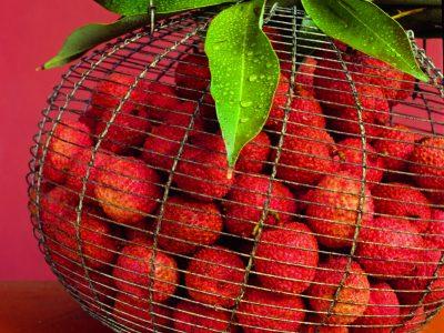 Les 5 fruits La Réunion de saisons à ne pas manquer